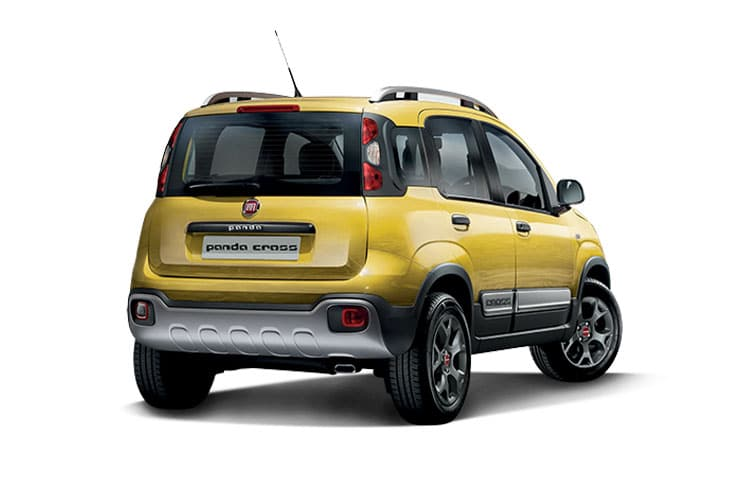 panda-cross-fipc-19.jpg - 5 Door Hatch 1.2 69 City Style Pack